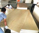 Madera contrachapada natural de la chapa de la suposición de la teca/de la ceniza/del arce/del roble rojo/de cereza del abedul de la base del álamo de la madera dura