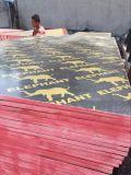 1220m m x 2440m m dedo de 15 milímetros - la película exterior impermeable de la madera contrachapada de la junta 1220*2440m m hizo frente a la madera contrachapada