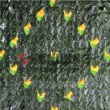 سياج رخيصة بلاستيكيّة يسيّج حديقة اصطناعيّة لبلاب سياج