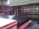 a película do tamanho de 1250*2500mm enfrentou a madeira compensada para a construção
