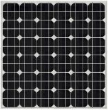 Usine Price 6m 40W DEL Outdoor Solar Light