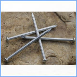 Galvanisierter konkreter Stahlnagel