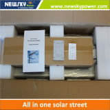 Réverbère solaire Integrated de 60W DEL avec le panneau solaire de batterie