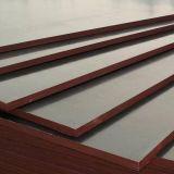 madera contrachapada impermeable de 15m m con base completa