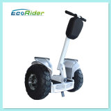 Skate elétrico popular de duas rodas de China, skate elétrico do balanço do auto