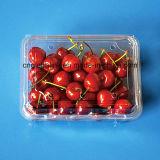 Plástico de la categoría alimenticia Clamshell recipiente de embalaje