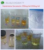Deca - Durabolin 처리되지 않는 분말 신진 대사 Nandrolone Decanoate 백색 분말