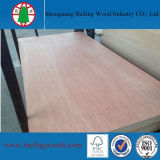 18mm Commercial Plywood/Packing Plywood/Marine Plywood