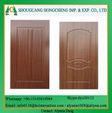 Moderne geformte Tür-Haut mit SGS