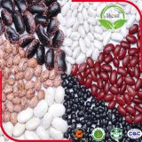 2016 getrocknete Arten weiße Bohnen