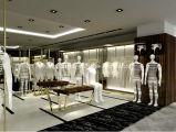 Crémaillère d'étalage fixée au mur élégante de vêtement en métal pour le modèle de système de vêtements de dames