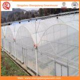 農業またはコマーシャルのためのプラスチックフィルムの単一スパンの温室