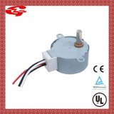 Synchronous reversível Motor para Home Appliances