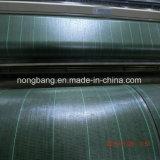 China-Fabrik-UV-BEHANDELTes Schwarzespp. gesponnenes Weed-Steuergewebe