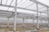 Digiuna il gruppo di lavoro prefabbricato montato della struttura d'acciaio (SP)
