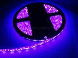 лента 5050 60 LEDs/M СИД для украшения праздника