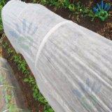 Nonwoven d'agriculture pour la protection des plantes