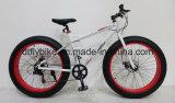 """26 """"Snow Bike, Bike grasa, con Shimano 7s"""