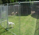 Canis soldados Pó-Revestidos pretos encaixotados ao ar livre do cão, fábrica do funcionamento do cão