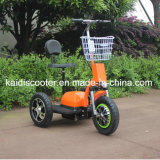 3 Wheels Electrical Bicycle Zappy Scooter Rear Shock Absorption