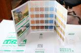 Livro de papel do cartão da cor da pintura da parede da impressão