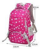 мешок Yf-Pb3104 Backpack мешка компьтер-книжки мешка школы коллежа емкости 2017large