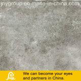 Azulejo rústico de la porcelana del diseño del cemento para el suelo y la pared Caria 600X600m m (Caria Gris)