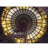 El sitio de cristal de la talla de encargo interior de la construcción enciende el techo de la flor de la belleza
