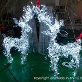 Motif LED Christmaslight休日の装飾の美しい王女