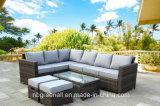 O sofá ao ar livre do pátio ajusta a mobília do Rattan do jardim