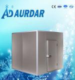 Porte coulissante de chambre froide de matériel d'entreposage au froid avec des traitements dans le prix le plus inférieur