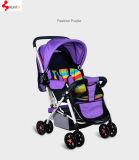De Wandelwagen Folable van de baby