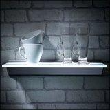 Het Licht en de Houder van de Plank van de Klem van het Flintglas voor 8mm Glas