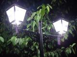 360 grados de luz de LED de la calle y el jardín