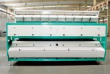 [هونس] مصنع جيّدة يبيع أرزّ & [سمس] لون فرّاز, لون [سرت مشن]