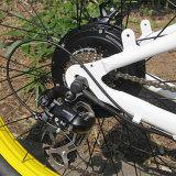 Ristar heißer vorbildlicher Schnee-elektrisches Fahrrad Rseb-505