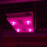 Hoher Ppfd PFEILER LED wachsen PFEILER, den volles Watt LED des Spektrum-600 für Veg Wachstum hell wachsen