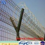 Электрическая гальванизированная Coated колючая проволока (XA-BW013)
