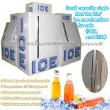 Escaninho do gelo da porta da capacidade pequena únicos/especialista das técnicas mercantís do gelo