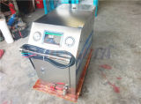 Нержавеющая машина мытья автомобиля пара Wld1060