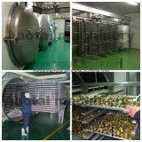 Drogere Prijs van de Vorst van het Fruit van de hoge Capaciteit de Industriële