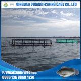 Gaiola da piscicultura da cultura aquática com rede de nylon dos peixes do PE