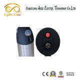 Tipo de garrafa de água Bateria elétrica do motor da bicicleta com carregador
