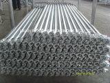 熱いすくいの型枠の建物のための電流を通された鋼鉄Ringlockの足場元帳