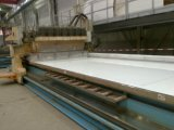 Miroir 8k superbe polissant/machine de meulage pour des feuilles d'acier inoxydable