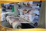 Maquinaria de impressão Flexographic de alta velocidade da cor do tipo 6 de Nuoxin