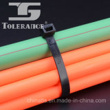 Serres-câble en nylon de constructeur de la Chine avec différentes tailles