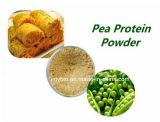 Горячее надувательство высокое - оптовая продажа порошка 80% протеина гороха Non-GMO протеина