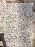 Гранит белого цветка горячего сбывания естественный Polished для вокзала