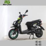 [مغ-د1] جبهة كبيرة [لد] خفيفة [موسل] درّاجة ناريّة نموذجيّة كهربائيّة